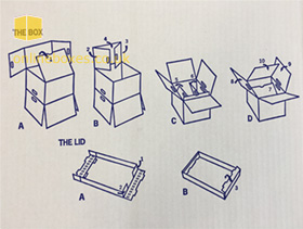 Box Assembly Instructions